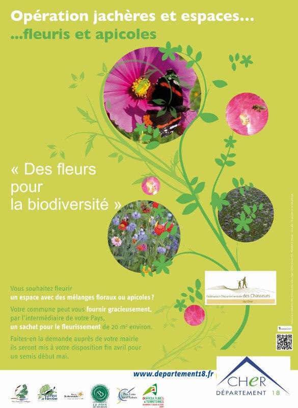 Jachères fleuries et apicoles