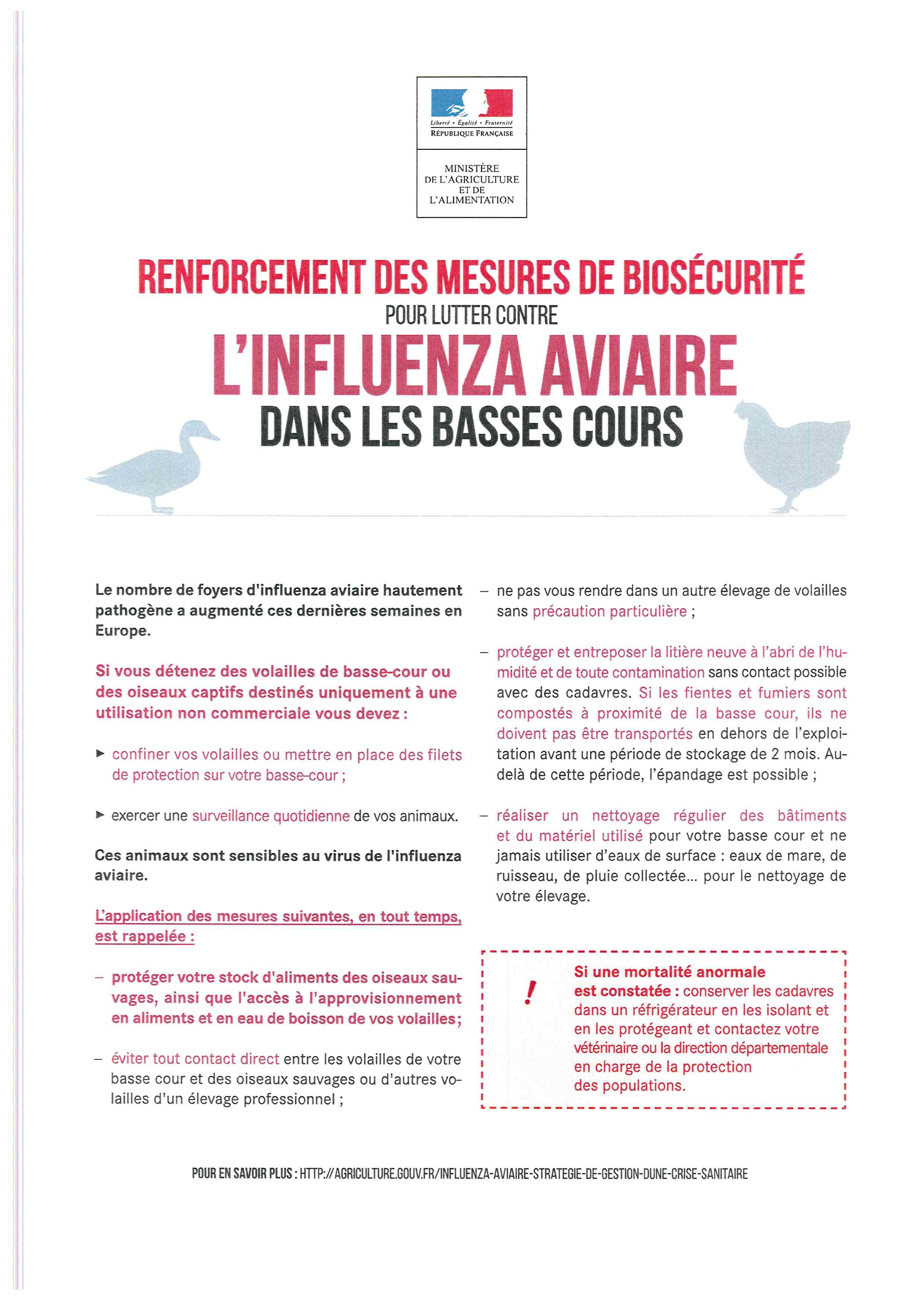 L'influenza aviaire