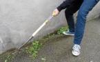 Objectif zéro pesticide dans nos villes et villages