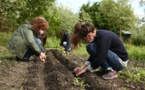 Les jardiniers solidaires